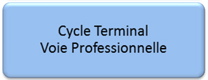 Cycle Terminal Voie professionnelle